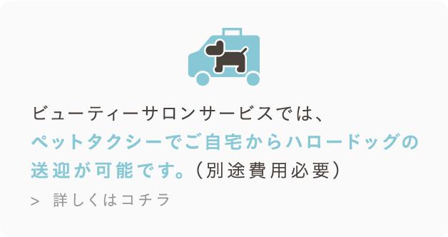 ビューティーサロンサービスでは、ペットタクシーでご自宅からハロードッグの送迎が可能です。(別途費用必要)