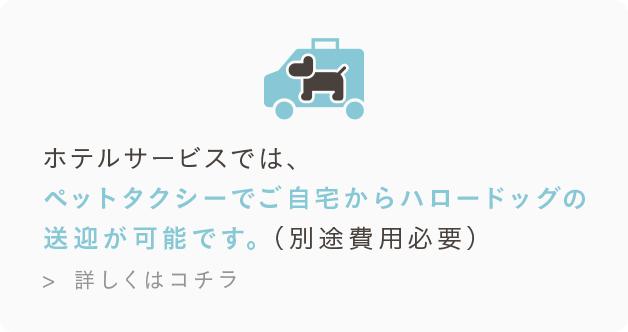 ホテルサービスでは、ペットタクシーでご自宅からハロードッグの送迎が可能です。(別途費用必要)