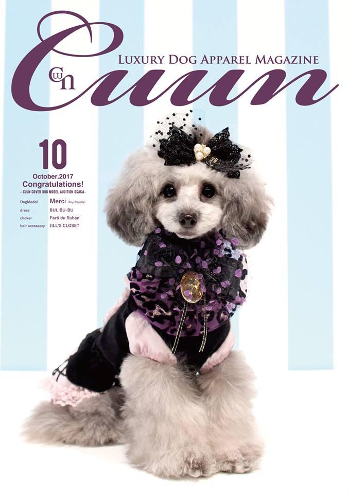 2018/02/28-03/03 人気モデル雑誌「CUUN」表紙モデルオーディション in 阪急ハロードッグフェスタ
