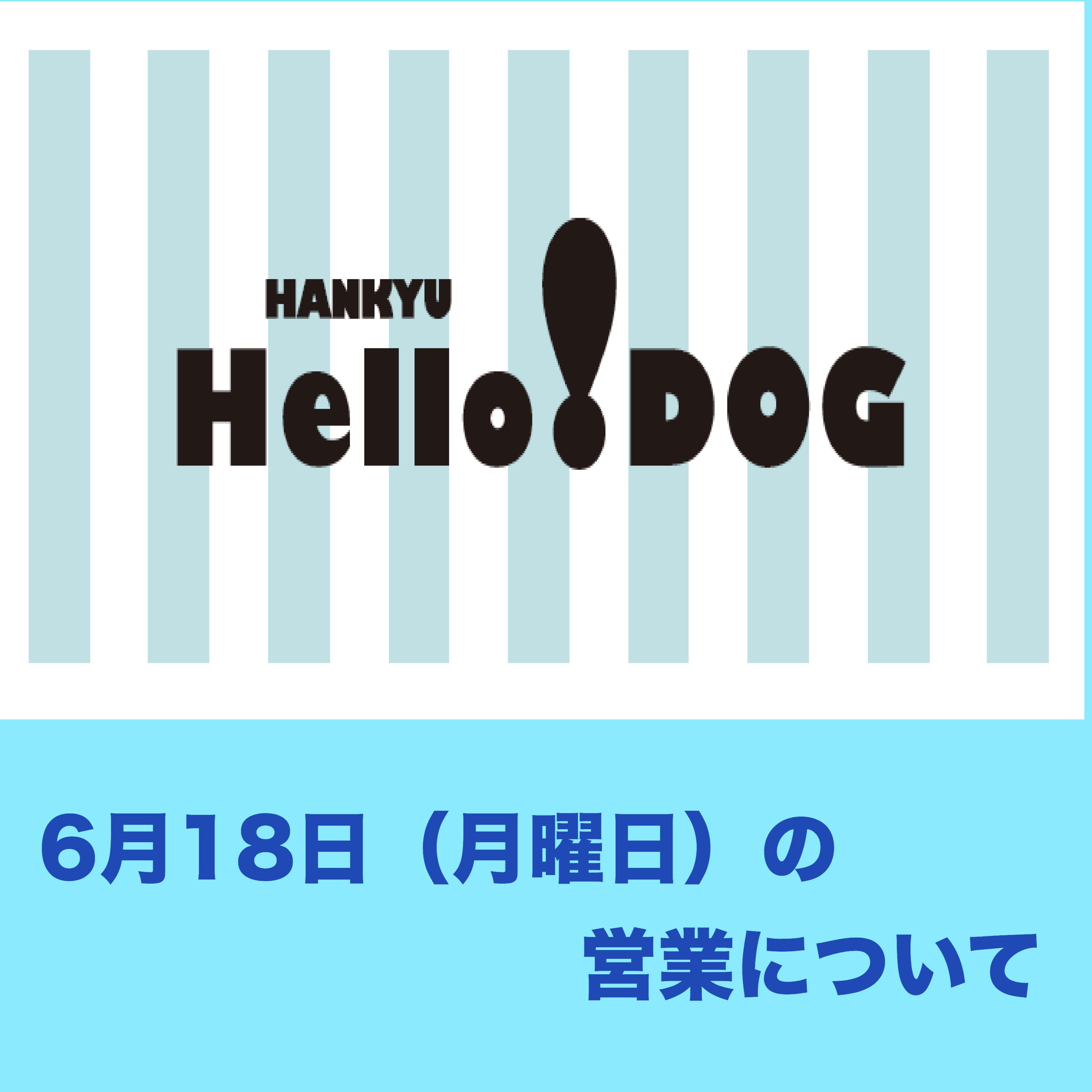 6月18日(月曜日) 阪急ハロードッグ各店の営業について