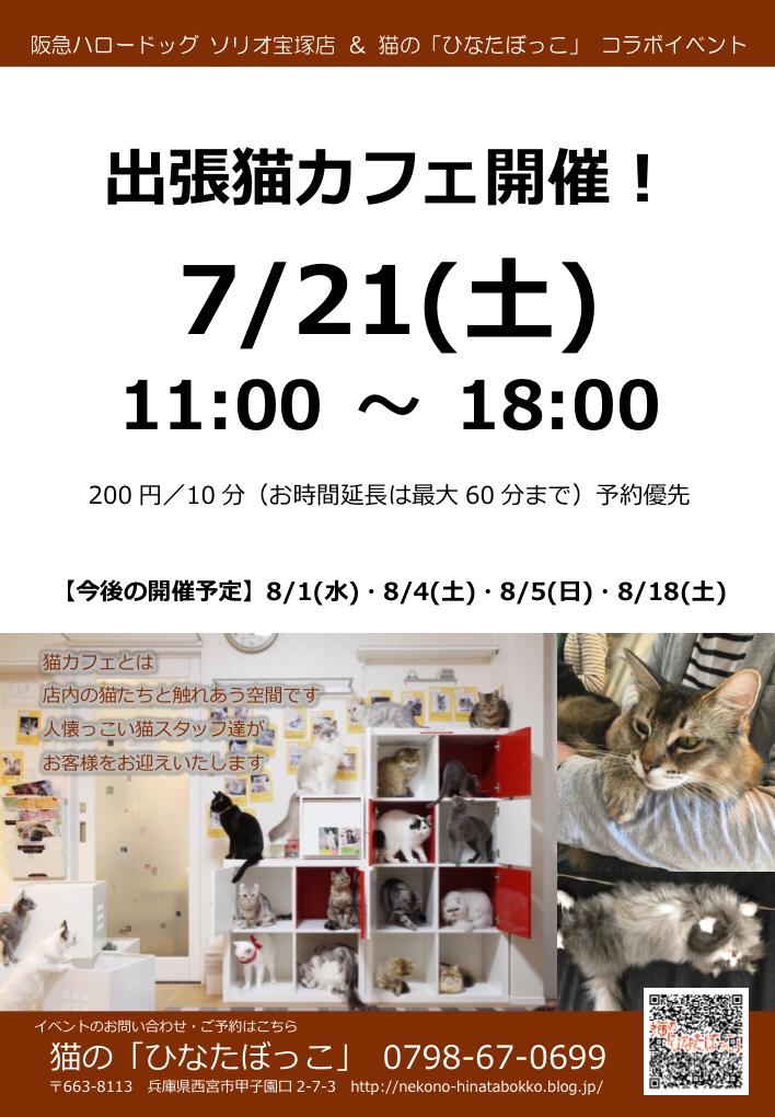 2018/07/21 ソリオ宝塚店 猫の「ひなたぼっこ」コラボイベント 出張猫カフェ開催!