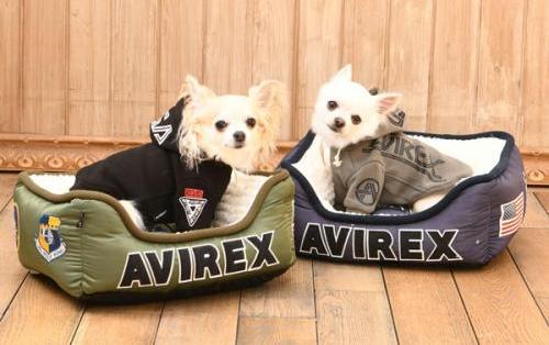 2018/09/12-09/18 西宮 「AVIREX」