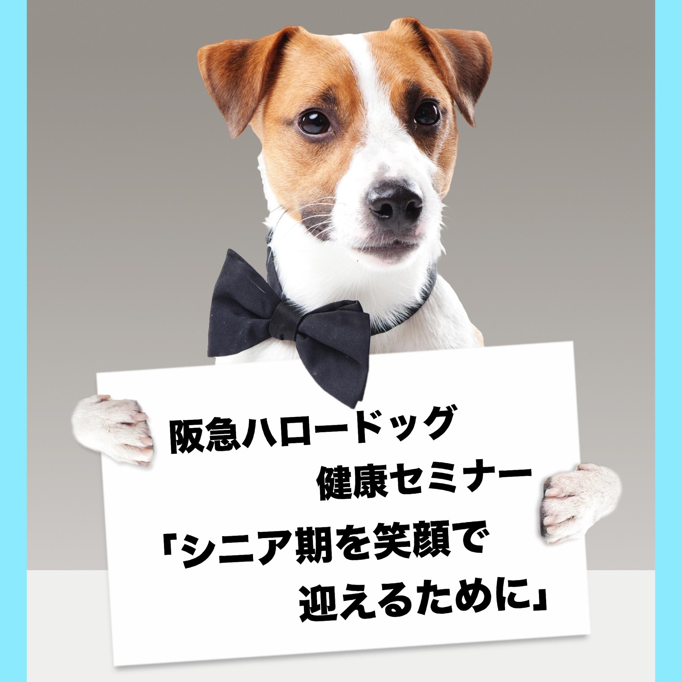 2018/10/13 西宮「阪急ハロードッグ健康セミナー」シニア期を笑顔で迎えるために