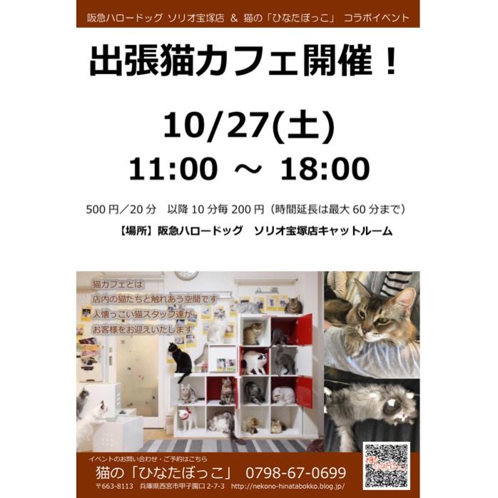 2018/10/27 「出張ネコカフェ」in阪急ハロードッグ ソリオ宝塚店