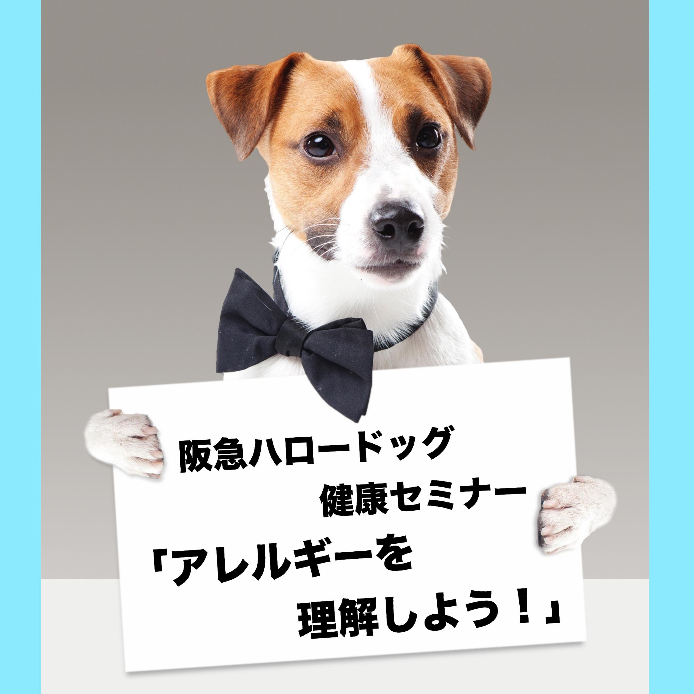 2018/12/08 西宮 阪急ハロードッグ健康セミナー 「アレルギーを理解しよう!」