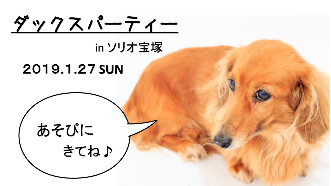 2019/1/27 ソリオ宝塚 「ダックスパーティー」