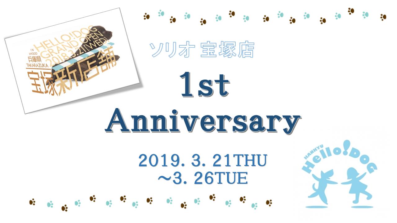 2019/3/21-3/26 ソリオ宝塚 「1st Anniversary」