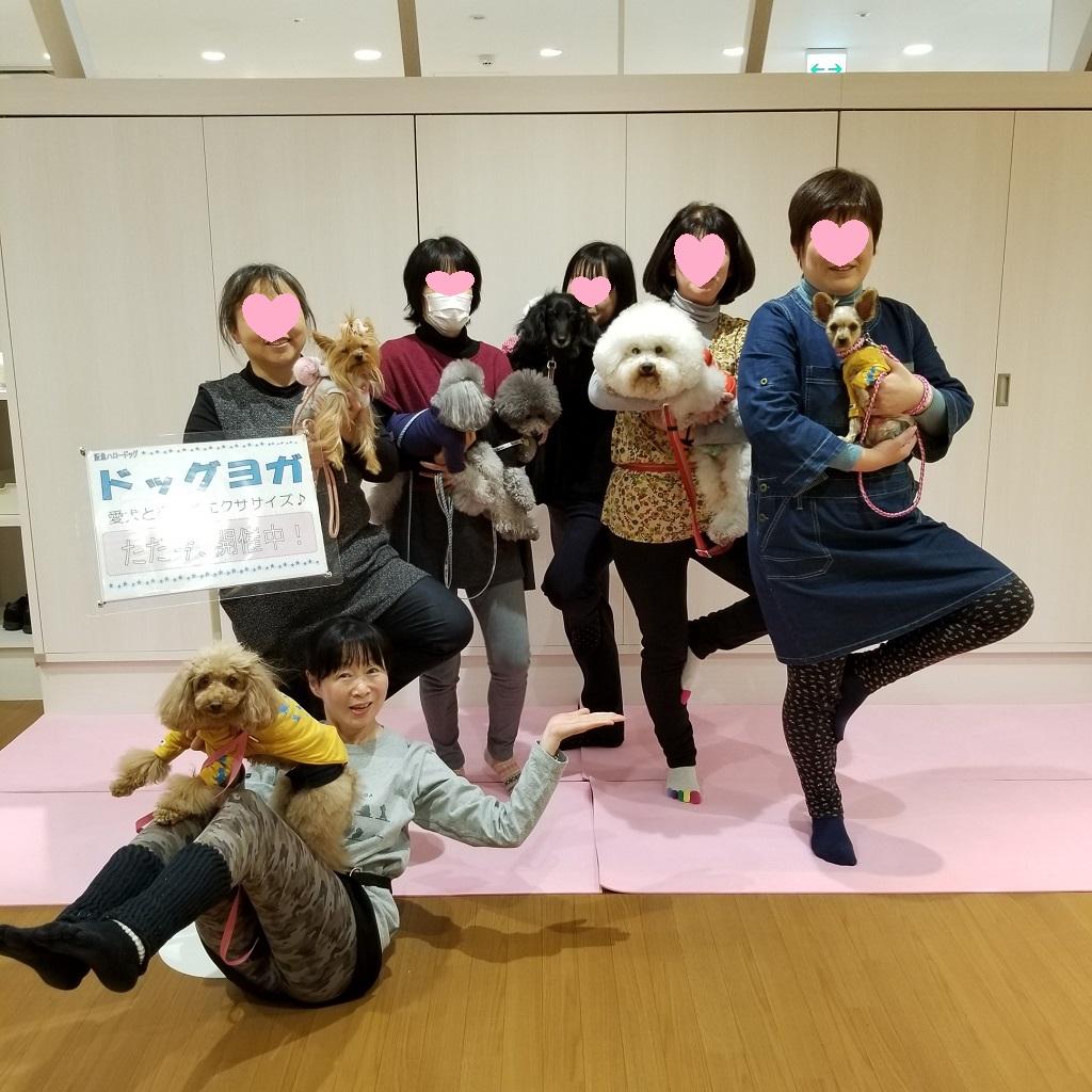 2019/3/16(土) 宝塚 ドッグヨガ