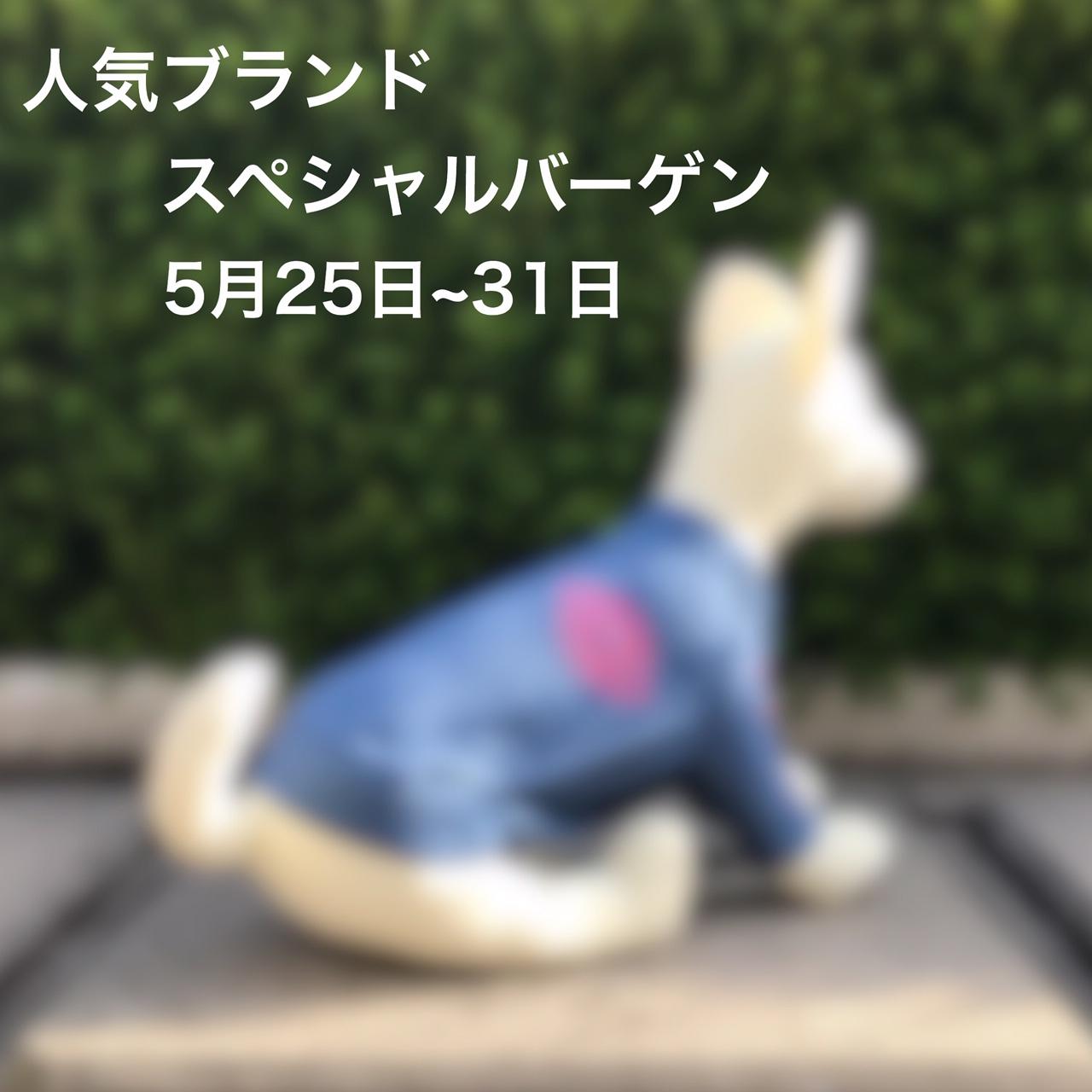 2019/05/25-05/31 宝塚 人気ブランド スペシャルバーゲン