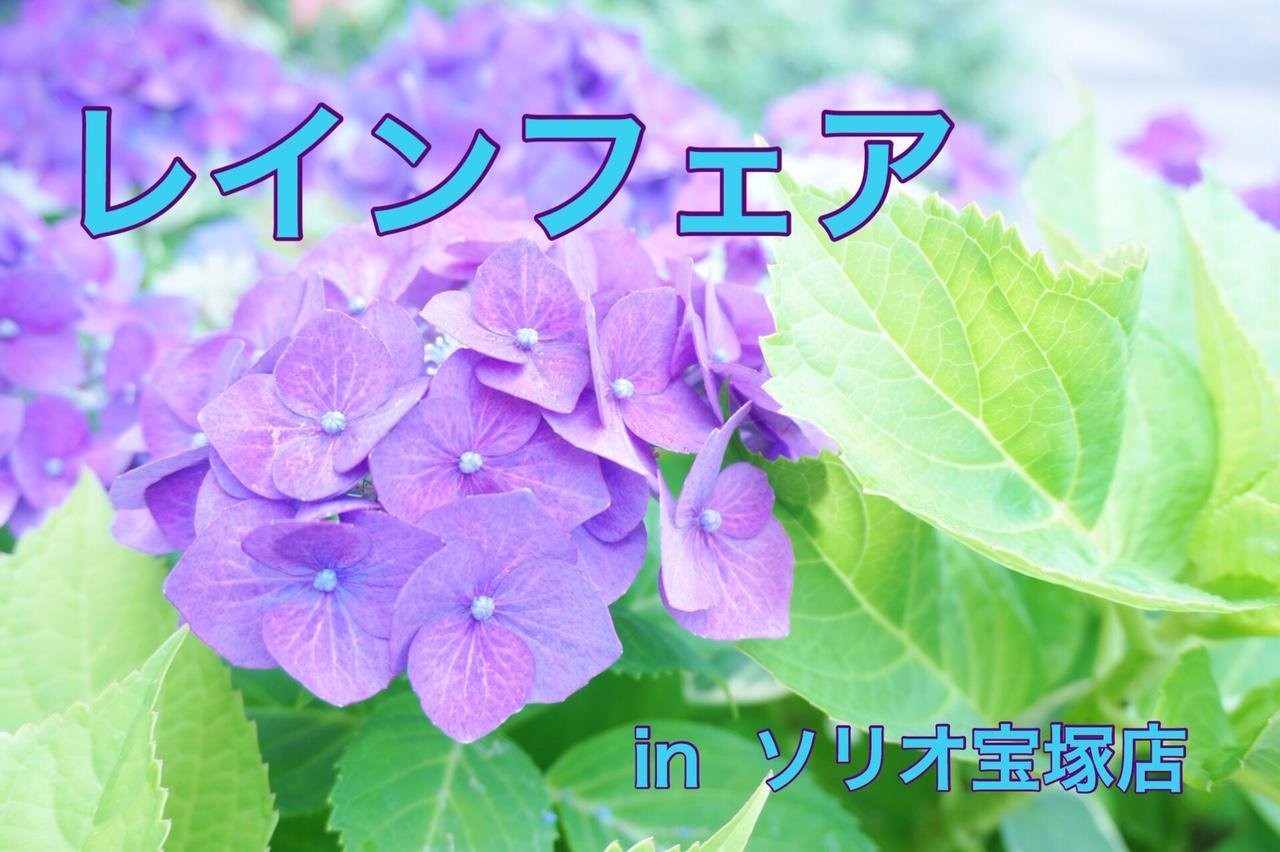 2019/06/26-06/30 宝塚 rainフェア