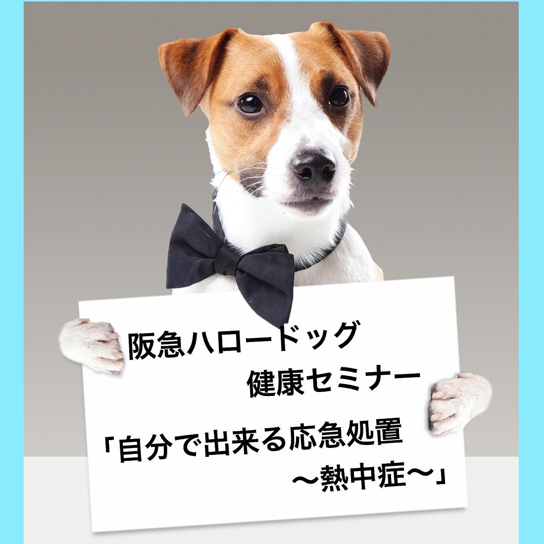2019/07/20(土) ソリオ宝塚店 健康セミナー「自分で出来る応急処置~熱中症~」