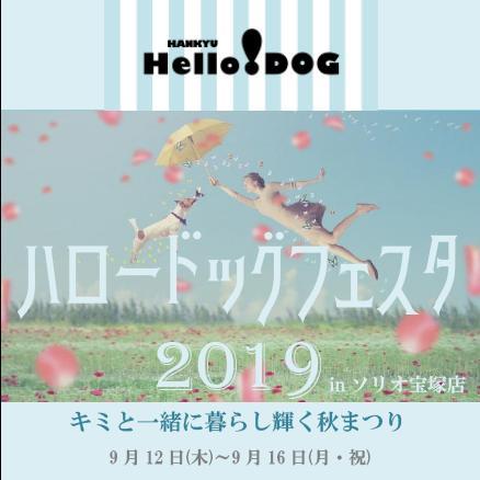 2019/09/12-16 宝塚店 阪急ハロードッグフェスタ2019 ~キミと一緒に暮らし輝く秋まつり~