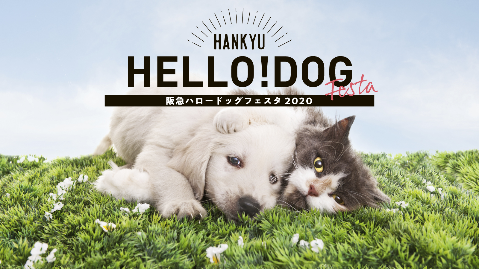 2020/02/22~24 宝塚 ヘルスケアイベントのお知らせ