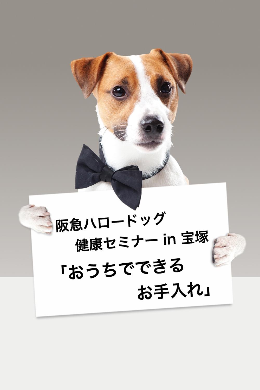 2020/01/19 宝塚  健康セミナー「おうちでできるお手入れ」