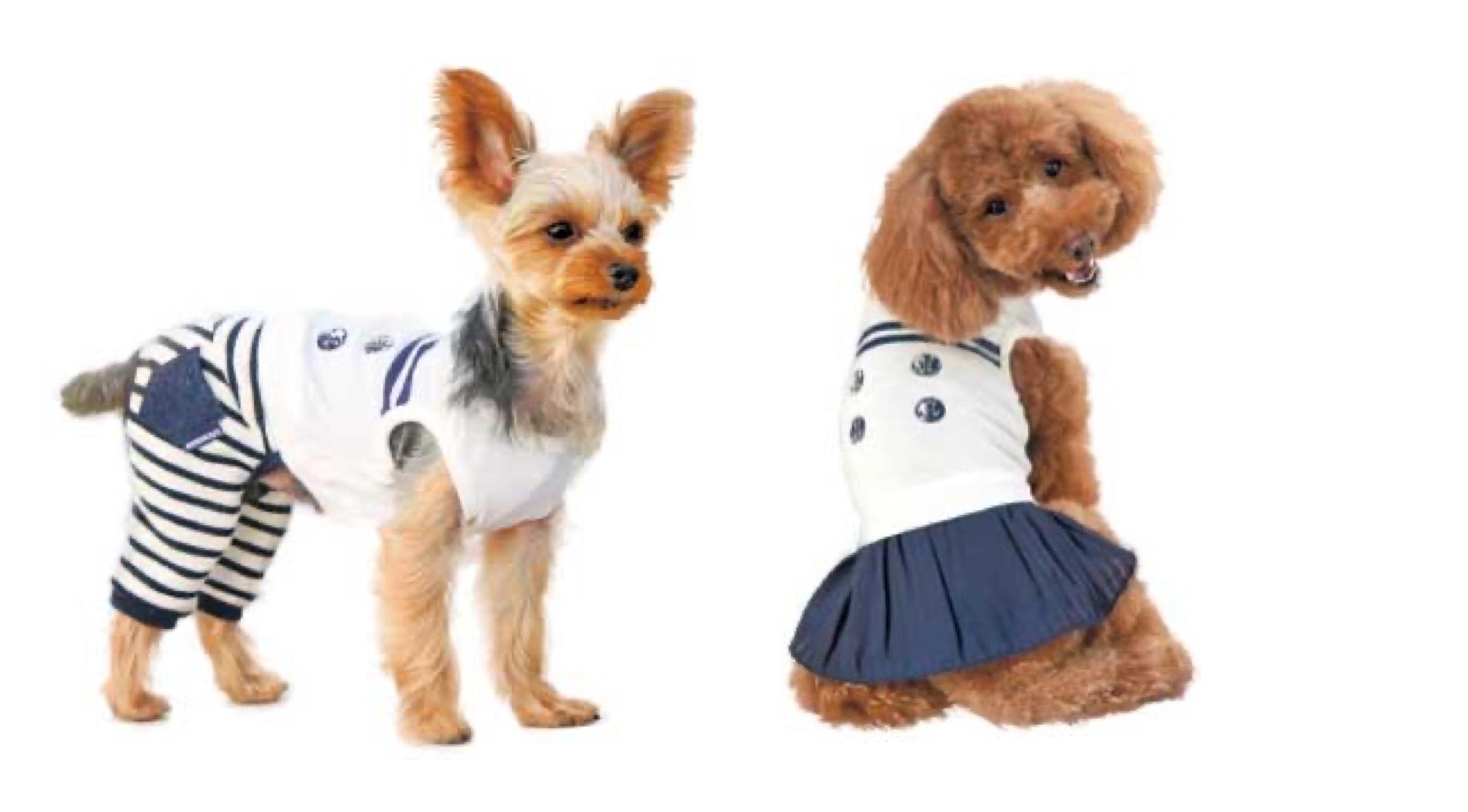 2020/03/20-22 宝塚 「犬と生活」新作ウェア