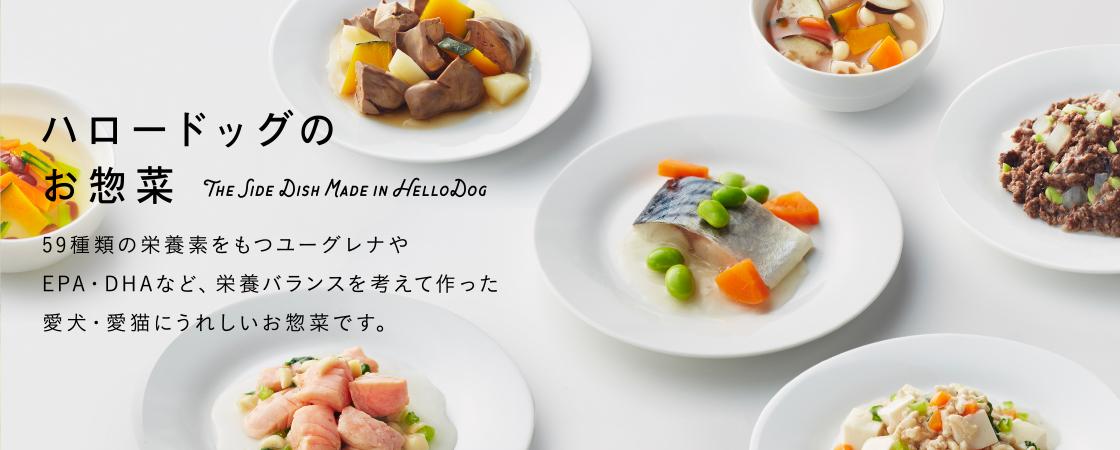 ☆ 阪急ハロードッグプレミアムキャンペーン