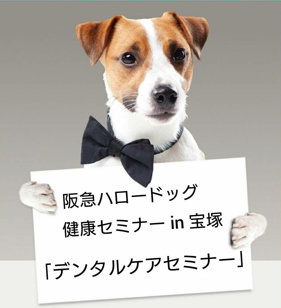 2020/07/18 宝塚 健康セミナー「デンタルケアセミナー」