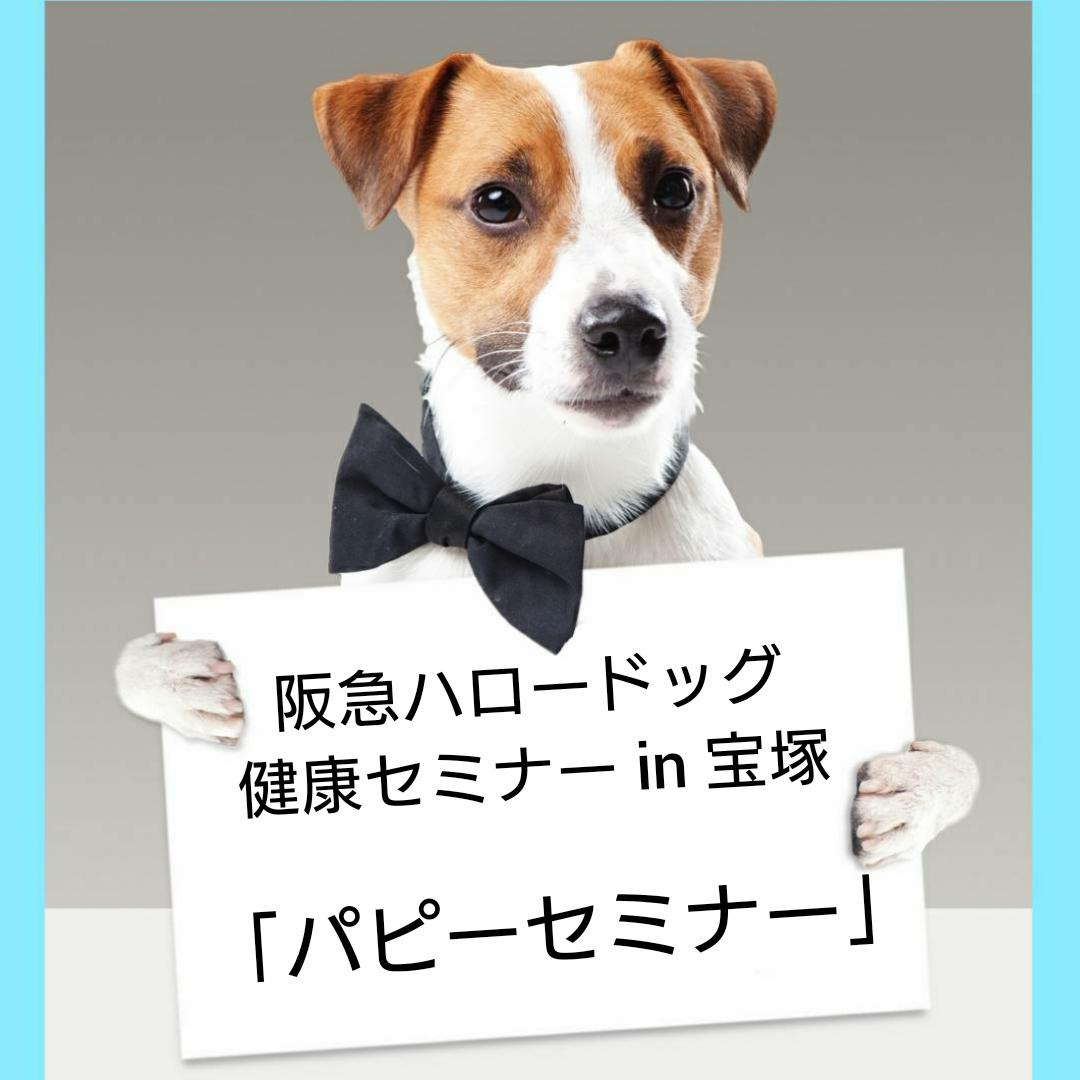 2021/04/17 宝塚 健康セミナー「パピーセミナー」