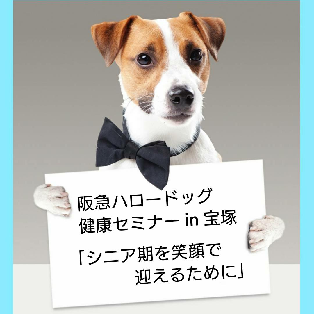 2020/09/19 宝塚 健康セミナー 「シニア期を笑顔で迎えるために」