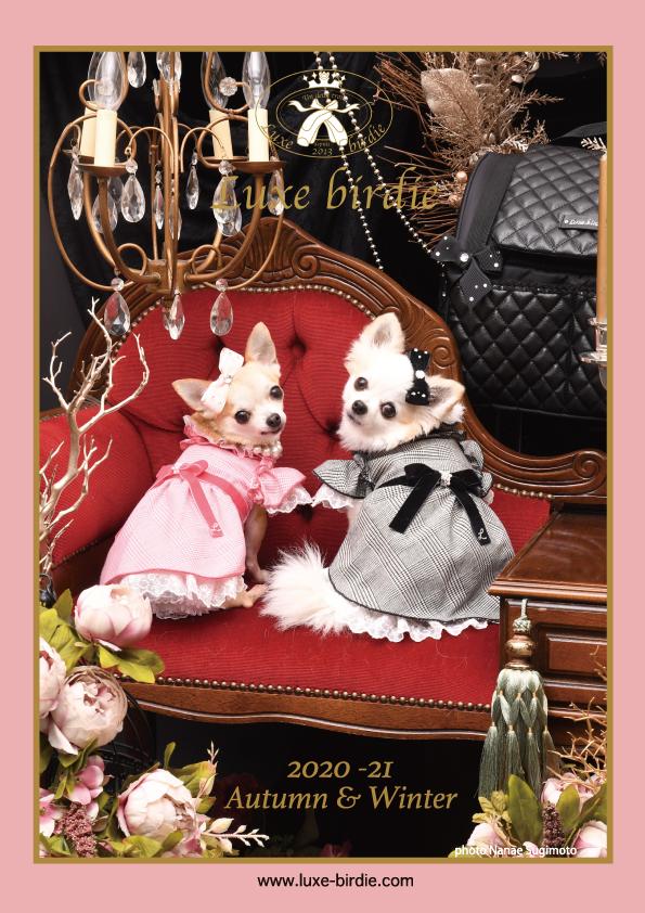 2020/11/18-24 宝塚 「Luxe birdie」