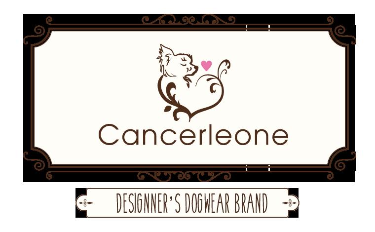 2020/12/1-15 宝塚 「Cancerleone」