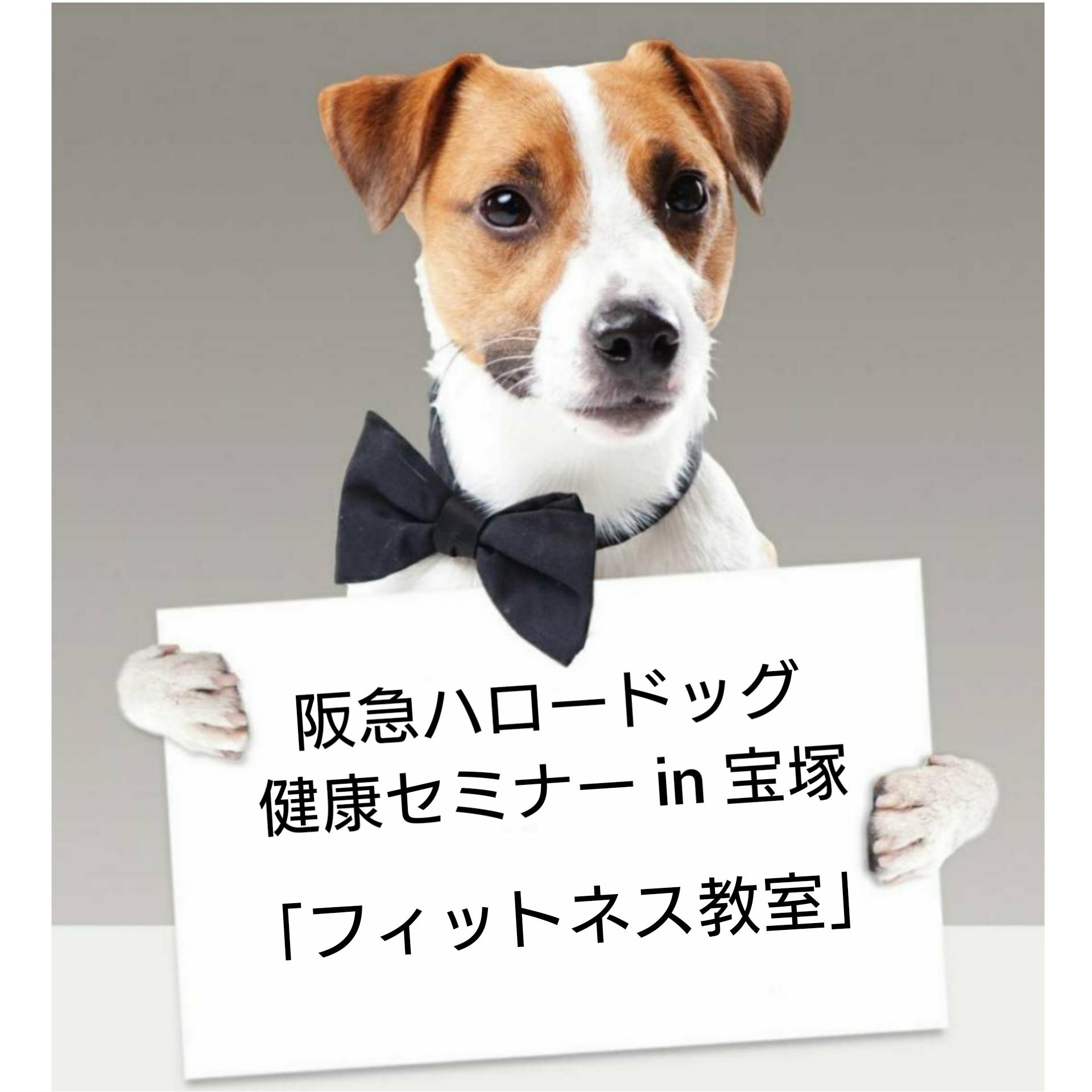 2021/1/16 宝塚 健康セミナー「フィットネス教室」