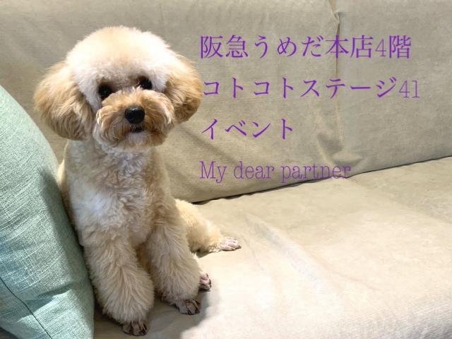 2021/03/03-09 阪急うめだ本店4階 イベント My dear partner 出店